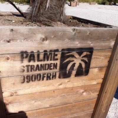 Ausflug an den Palmenstrand